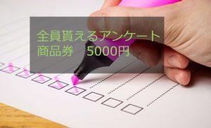 全員貰えるアンケート商品券5000円